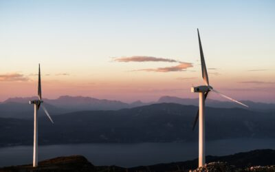 Renewable Energy is More Important Now Than Ever